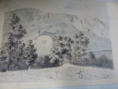 A 19th C. ALBUM OF NINETEEN BOTANICAL WATERCOLOURS