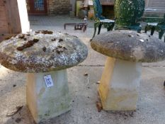 A PAIR OF STRADDLE STONES