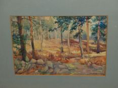 ALAN WHITE (20th CENTURY) ARR. A WOODLAND VIEW, SIGNED WATERCOLOUR 24 X 35cm