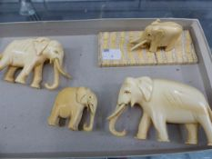A GROUP OF ANTIQUE CARVED IVORY ELEPHANTS.
