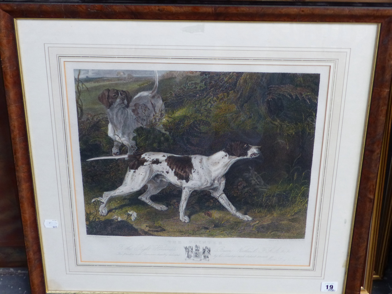 AFTER MARTIN THEODORE WARD. A HAND COLOURED PRINT OF A POINTER. 40 x 43cms - Image 2 of 3