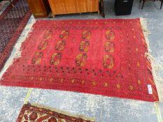 AN AFGHAN BOKHARA SMALL CARPET, 266 x 200cms