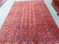 AN AFGHAN BOKHARA MAIN CARPET, 335 x 218cms