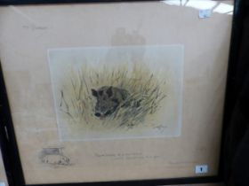 SNAFFLES, CHARLES JOHNSON PAYNE (1884-1967) A PENCIL SIGNED COLOUR PRINT OF A WILD BOAR. 43 x 51cms
