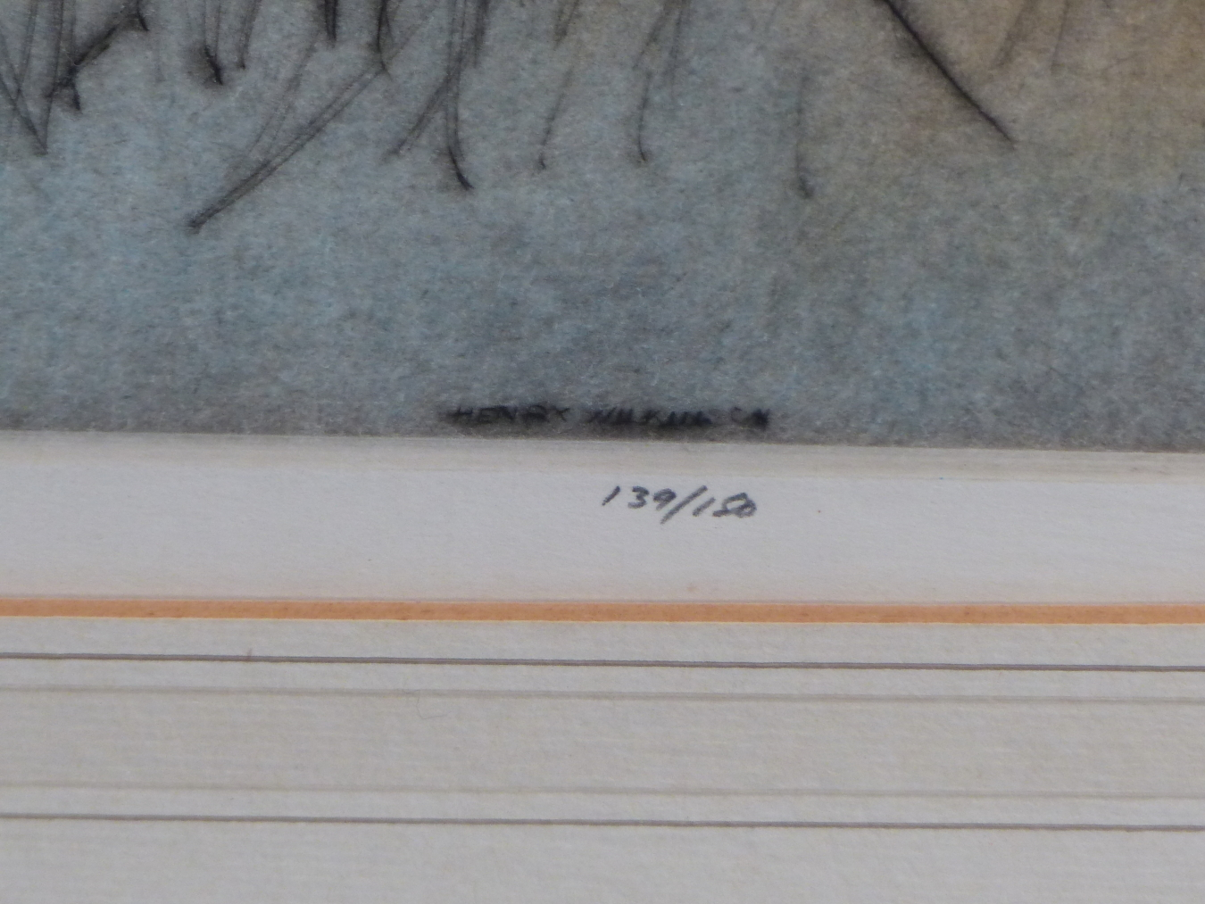 HENRY WILKINSON. THREE PENCIL SIGNED COLOUR ETCHINGS OF DOGS. TOGETHER WITH A PENCIL SIGNED - Image 4 of 7