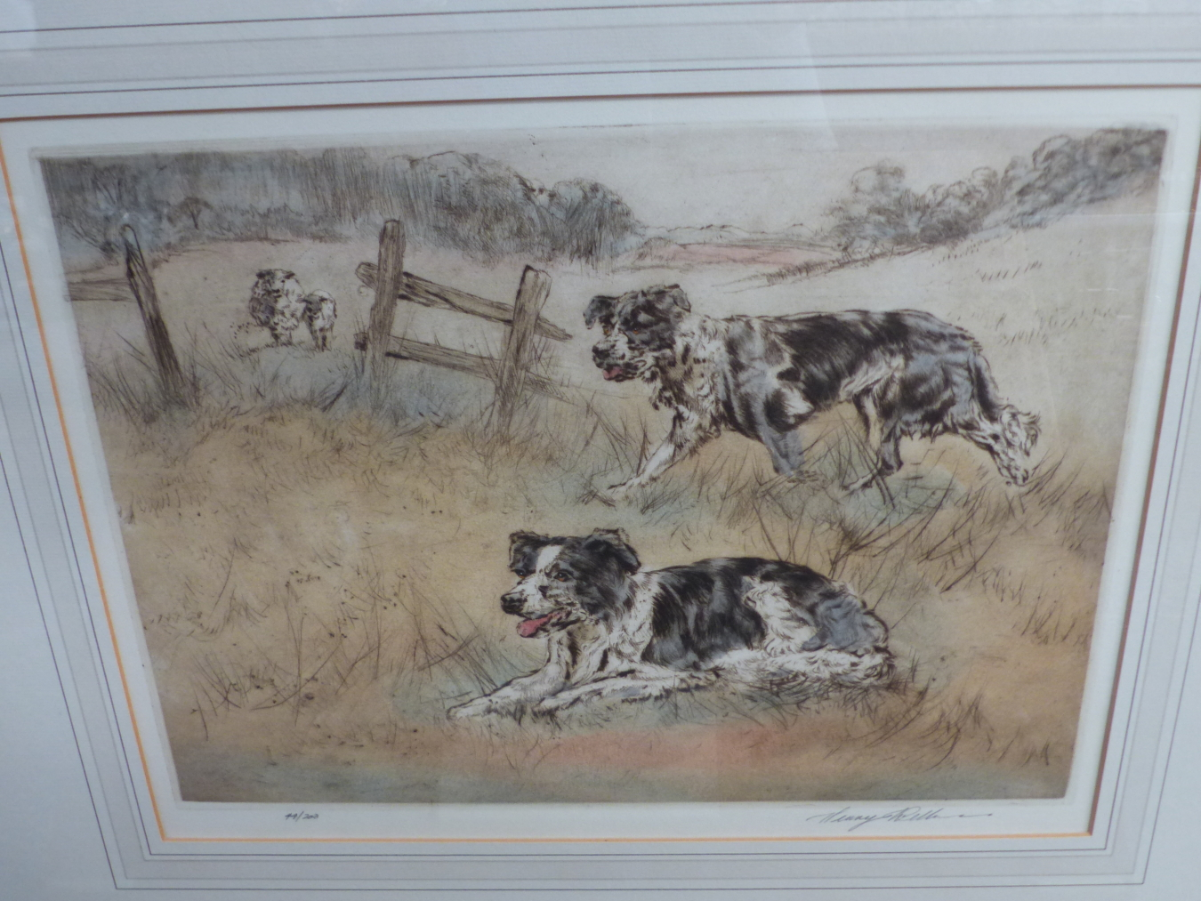 HENRY WILKINSON. THREE PENCIL SIGNED COLOUR ETCHINGS OF DOGS. TOGETHER WITH A PENCIL SIGNED - Image 7 of 7