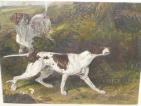 AFTER MARTIN THEODORE WARD. A HAND COLOURED PRINT OF A POINTER. 40 x 43cms