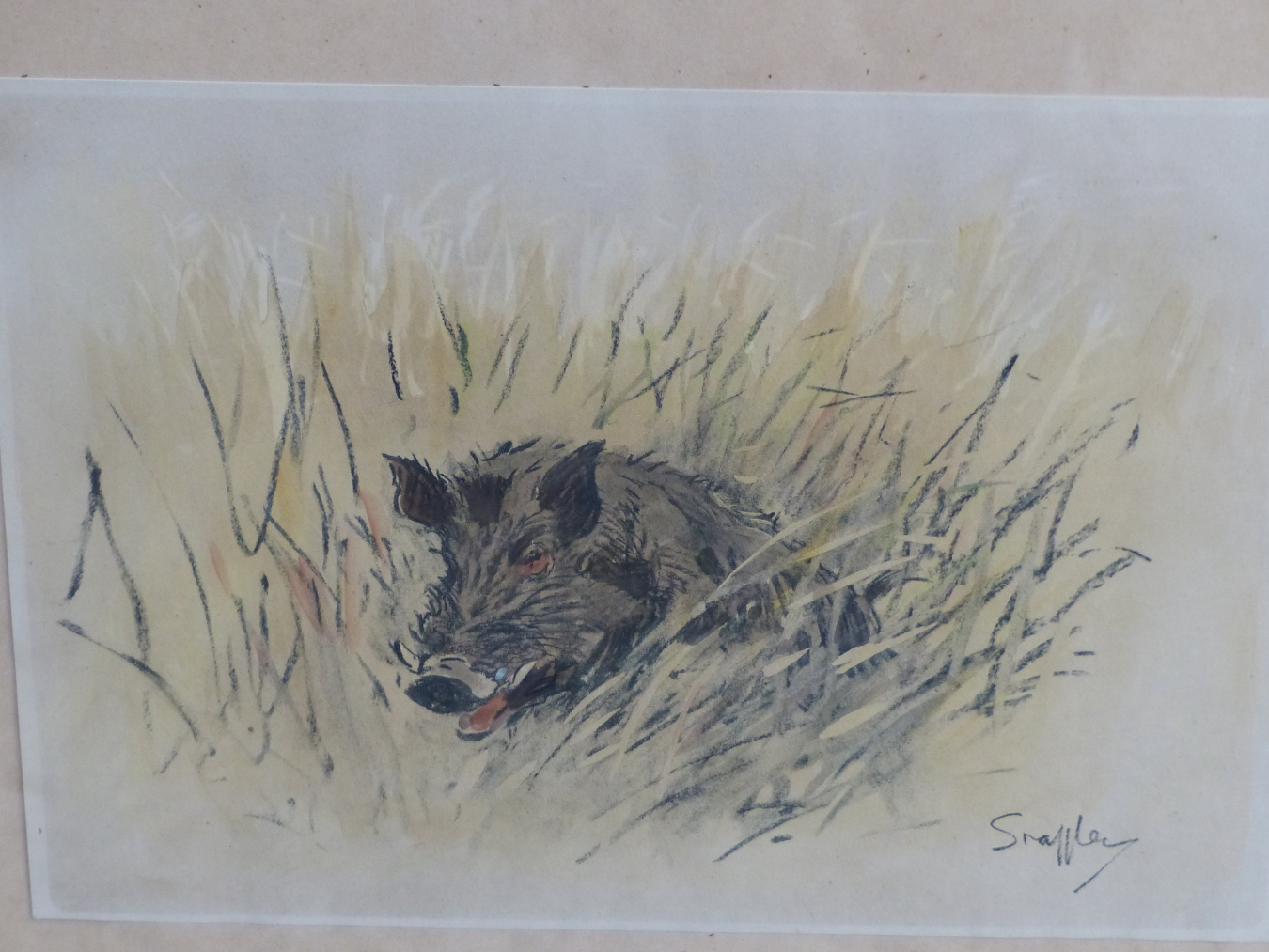 SNAFFLES, CHARLES JOHNSON PAYNE (1884-1967) A PENCIL SIGNED COLOUR PRINT OF A WILD BOAR. 43 x 51cms - Image 2 of 7