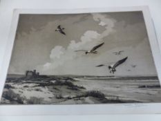 A GROUP OF COLOUR ETCHINGS OF BIRDS. MOST UNMOUNTED AND UNFRAMED INCLUDING AN ANTIQUE HAND
