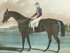 """A HAND COLOURED PRINT AFTER J.F HERRING , THE RACE HORSE """"INDUSTRY"""" 44 x 50cms"""