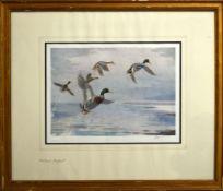 "John Cyril Harrison, ""Widgeon"", ""Teal"" and ""Mallard"", group of three artists coloured proofs, all"