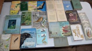 Box: 30 bird and ornithological and pamphlets