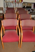 Eight beechwood framed office chairs, upholstered in faded pink fabric