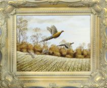 "Mark Chester (contemporary), ""Autumn Stubble I - Pheasants"", acrylic on board, signed lower left, 19"
