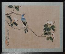 Chinese School (20th century), Bird on a branch, watercolour on silk, 22 x 29cm