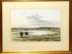 Martin Sexton, Cattle on the marsh, watercolour, signed lower left, 31 x 44cm