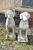 PAIR COMPOSITION FIGURES OF SEATED HOUNDS H 75CM