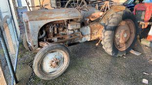 Ferguson Tractor, vineyard model, barn-find tractor