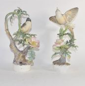 Pair of Royal Worcester bird groups modelled by Dorothy Doughty, one with the Lesser Whitethroat and