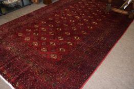 Modern Shiraz carpet with multi-gull border, 260 x 150cm