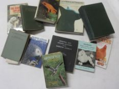Small box of animal interest, 11 titles including dog behavioural books, canine medicine and