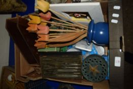 BOX CONTAINING TREEN WARES INCLUDING WOODEN MODELS OF TULIPS, SMALL BOXED COMPASS SET AND VARIOUS