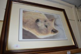 LARGE STEPHEN TOWNSEND PHOTOGRAPHIC FRAMED PRINT OF A WOLF, SIGNED AND NUMBERED IN PENCIL TO MARGIN,