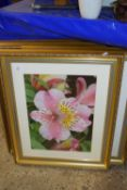 SET OF FOUR GOOD QUALITY FRAMED PHOTOGRAPHIC FLORAL PRINTS, EACH FRAME SIZE APPROX 50 X 61CM