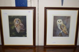 PAIR OF FRAMED LIMITED EDITION STEPHEN TOWNSEND PRINTS OF OWLS, SIGNED IN PENCIL TO MARGIN,