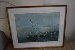 PRINT OF BIRDS BY VERNON WARD