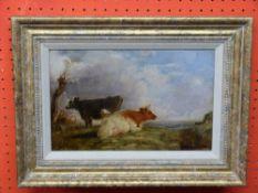 C19th British School, Oil on board, Cattle, 19 x 30cm