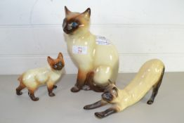 MODELS OF SIAMESE CATS