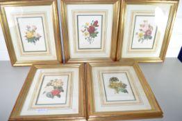 SET OF FIVE PRINTS OF VARIOUS FLOWERS