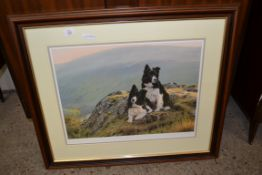 SIGNED STEPHEN TOWNSEND DOG PRINT, FRAME WIDTH APPROX 79CM