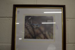 FRAMED PHOTOGRAPH OF A BLUE TIT BY STEPHEN TOWNSEND, NUMBERED 76/400