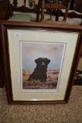 FRAMED DOG INTEREST (LABRADOR) PRINT BY STEPHEN TOWNSEND, APPROX 54CM WIDE
