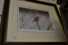 PRINTS BY SUSAN TOWNSEND, LIMITED EDITION WITH STAMP AND SIGNATURE TO MOUNT