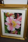 FOUR FRAMED PHOTOGRAPHIC FLORAL PRINTS
