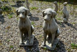 COMPOSITE PAIR OF SEATED HOUNDS, HEIGHT 70CM