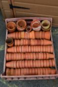 LARGE QTY OF SMALL TERRACOTTA PLANT POTS