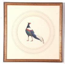 "J C Harrison, Watercoulour, Pheasant Study ""Swinhoes Pheasant"", produced for the book ""Pheasants"