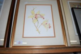 MIXED LOT: THREE VARIOUS FLORAL STUDIES COMPRISING A M THOMAS PASTEL STUDY OF FREESIA FLOWERS,