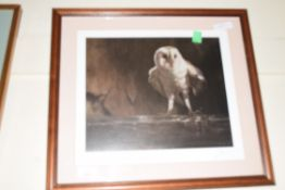 JOHN TRICKETT, LIMITED EDITION PRINT, BARN OWL, SIGNED IN PENCIL, 165/200, FRAMED AND GLAZED