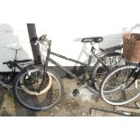 ADULT SHOPPER BICYCLE