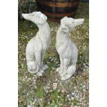 PAIR OF SMALL SEATED WHIPPETS, HEIGHT 58CM