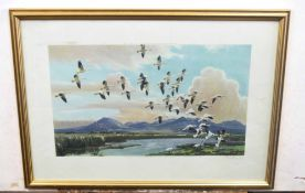 Peter Markham Scott (British 20C), Snow Geese, California, 1959. Coloured lithograph, signed in