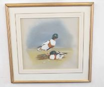 George E. Evans (British 20C), A pair of Shelducks with offspring . Watercolour with body colour .