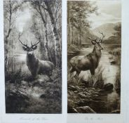 A pair of highland prints, titled 'Monarch of the Glen' and 'On Alert'. Lithograph (sepia) on