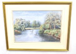 British, 20th century, Pair of mallards over water, pencil and pastel on card, indistinctly