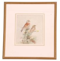Roland Green (British, 20th century), Finches perched on branches, watercolour, signed, 8 x 8ins